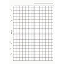 Picture of Filofax A5 Quadrille Notepaper - White
